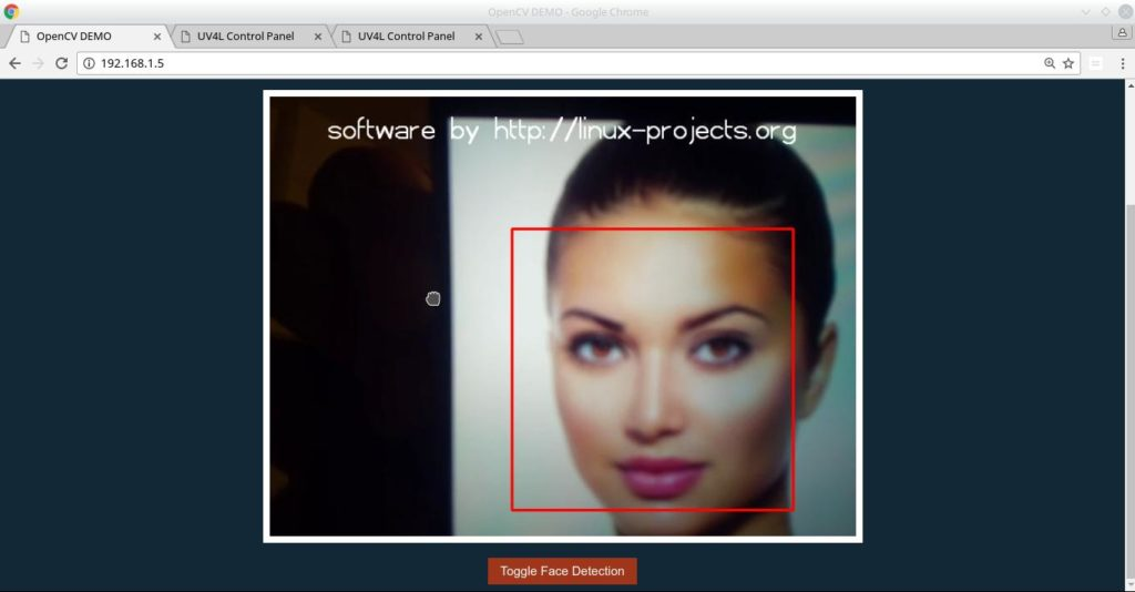 facedetection2
